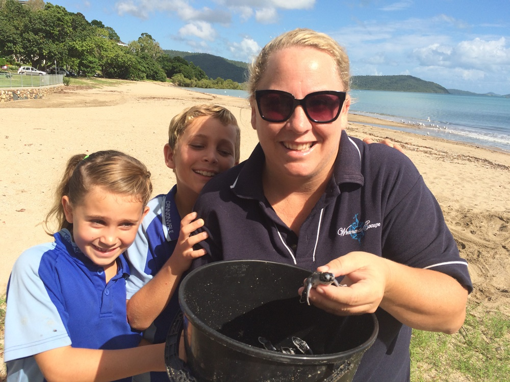 Whitsunday Escape staff with baby turtles in Airlie Beach