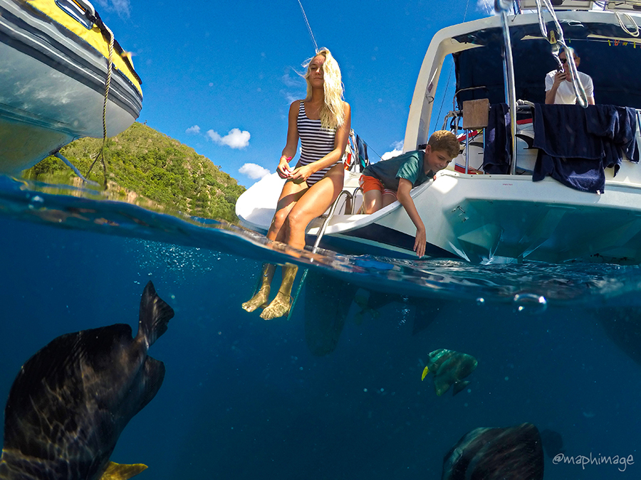 Bareboaters enjoy marine life experiences up close and personal in the Whitsundays