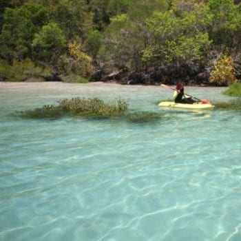 Whit Bay Kayaking Whitsunday Escape™