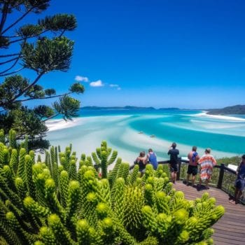 Hoop Pine Lookout Overlooking Beautiful Whitsundays Sailing Holiday Activities